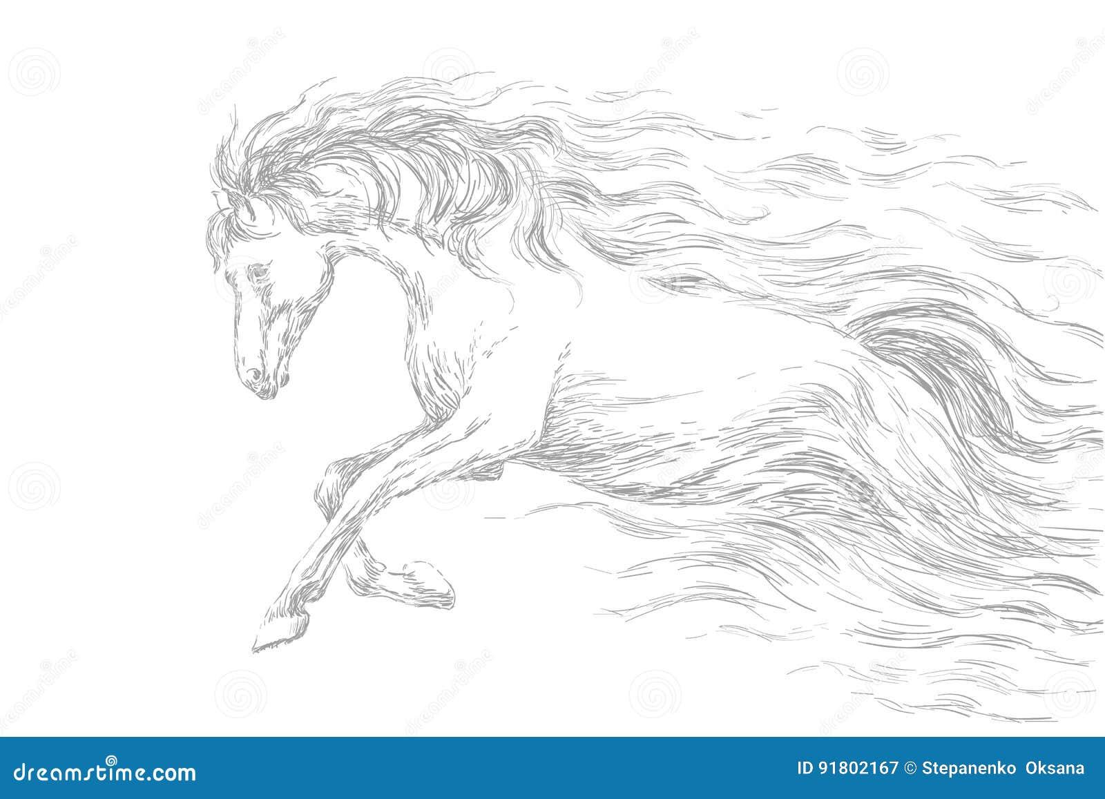 Running horse line drawing gray pencil sketch vector illustration