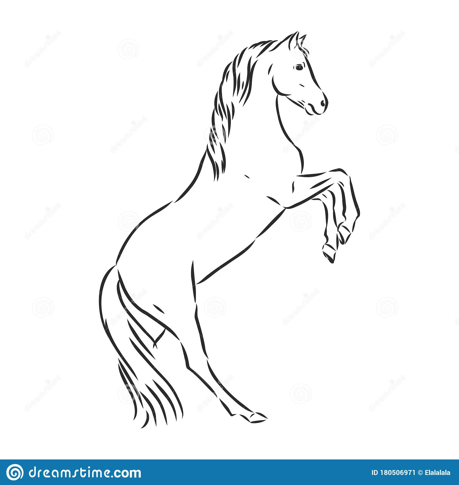 Running Horse Vector Illustration Black And White Outline Beautiful Horse Horse Icon Vector Sketch Illustration Stock Illustration Illustration Of Nature Horse 180506971