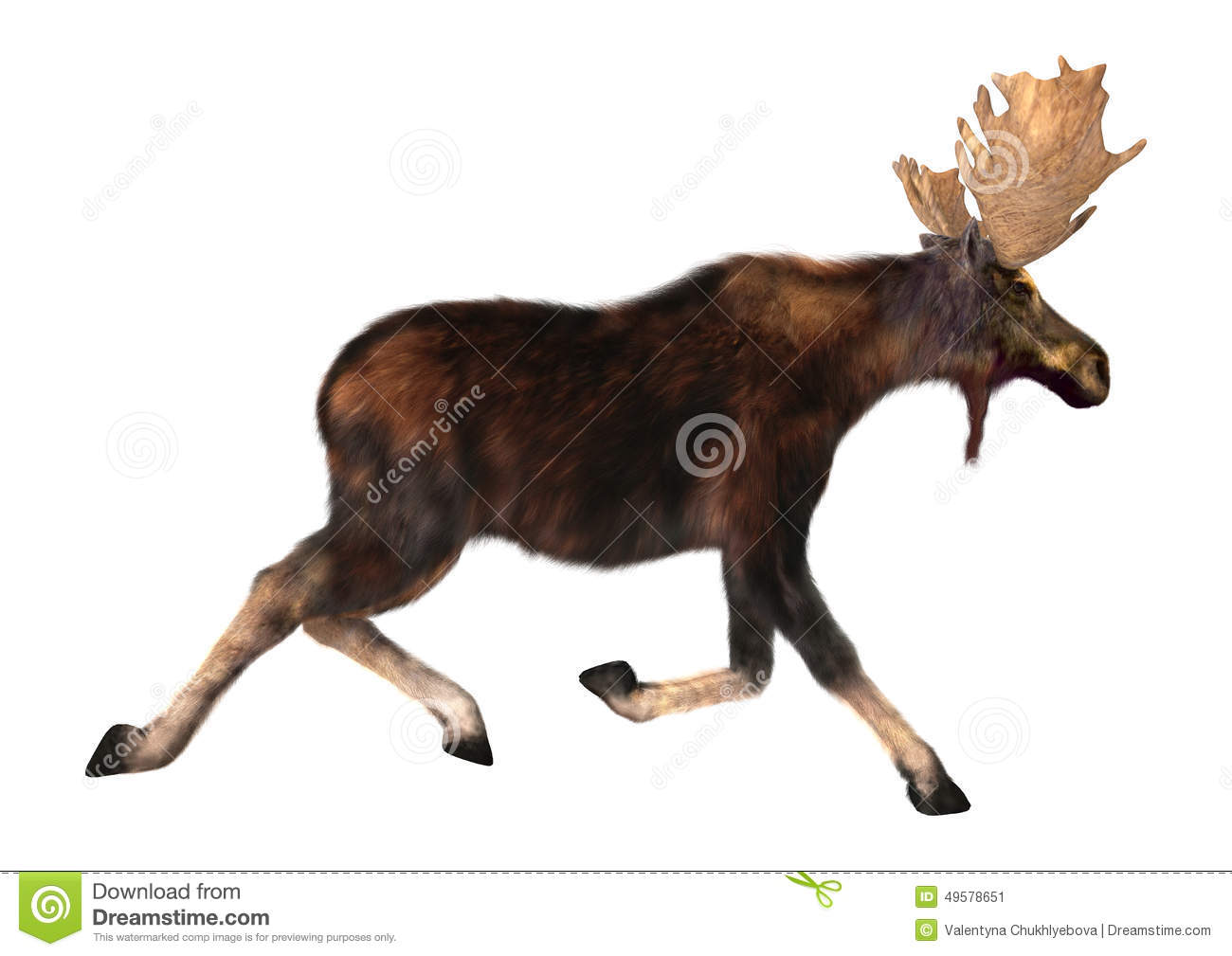 baby moose cartoon