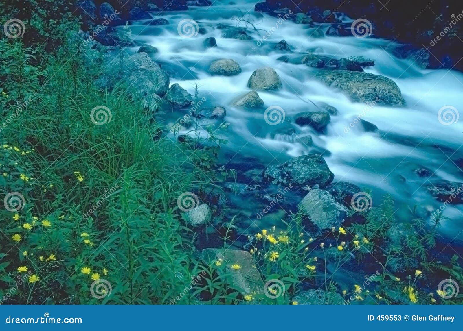 Download Running stream stock image. Image of weeds, landscapes - 459553