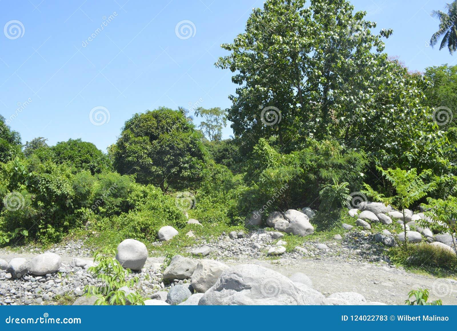 Ruparan河岸位于barangay Ruparan, Digos市,南达沃省,菲律宾