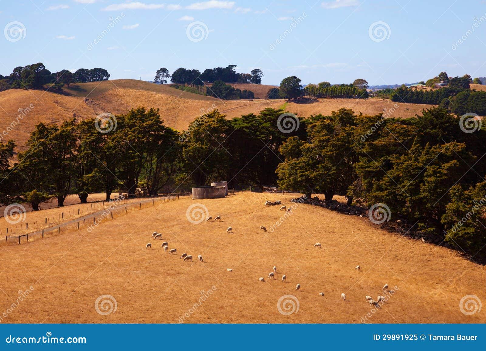 Australia countryside stock image image of australia for Rural garden designs australia