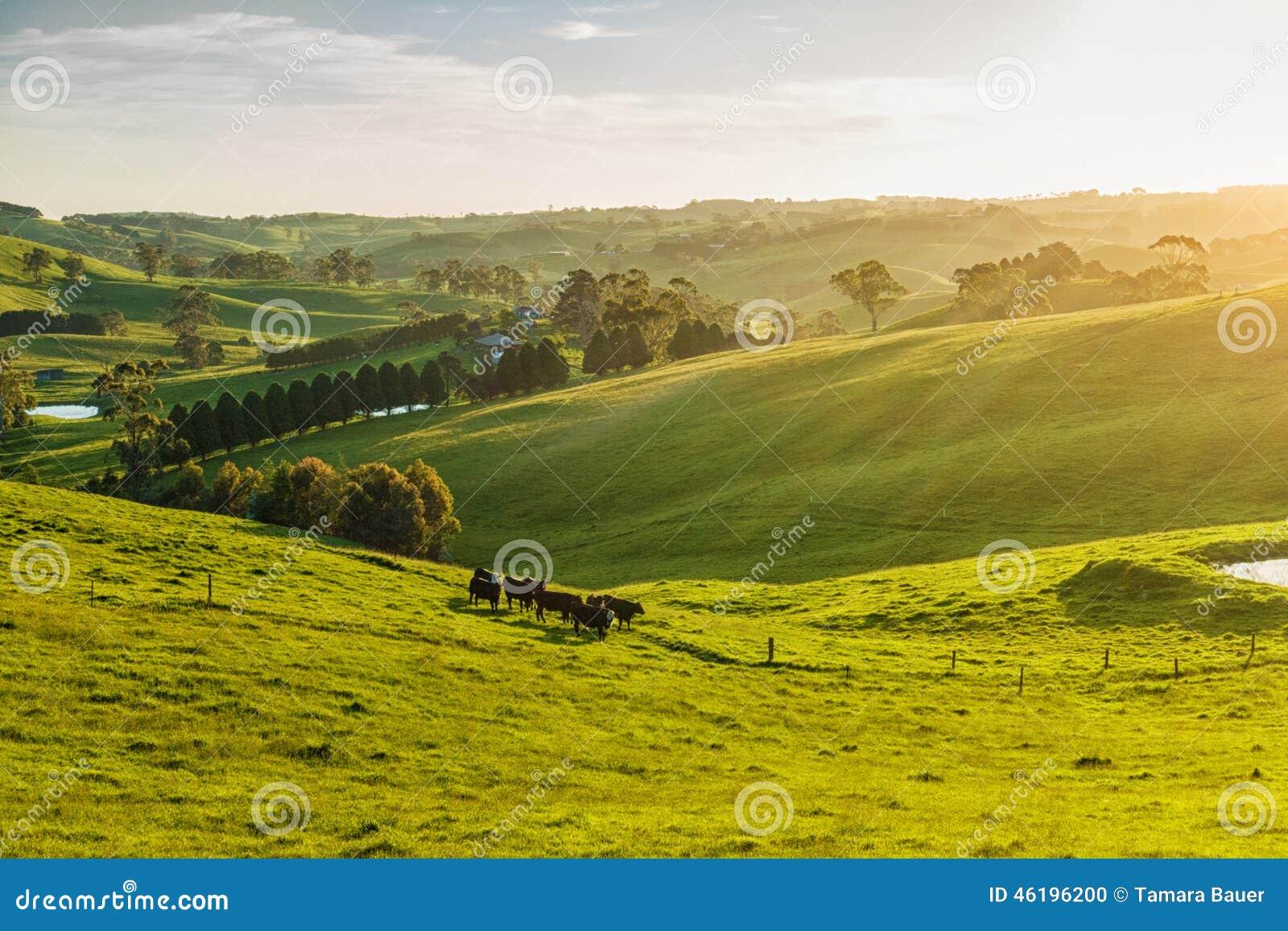 Rural australii
