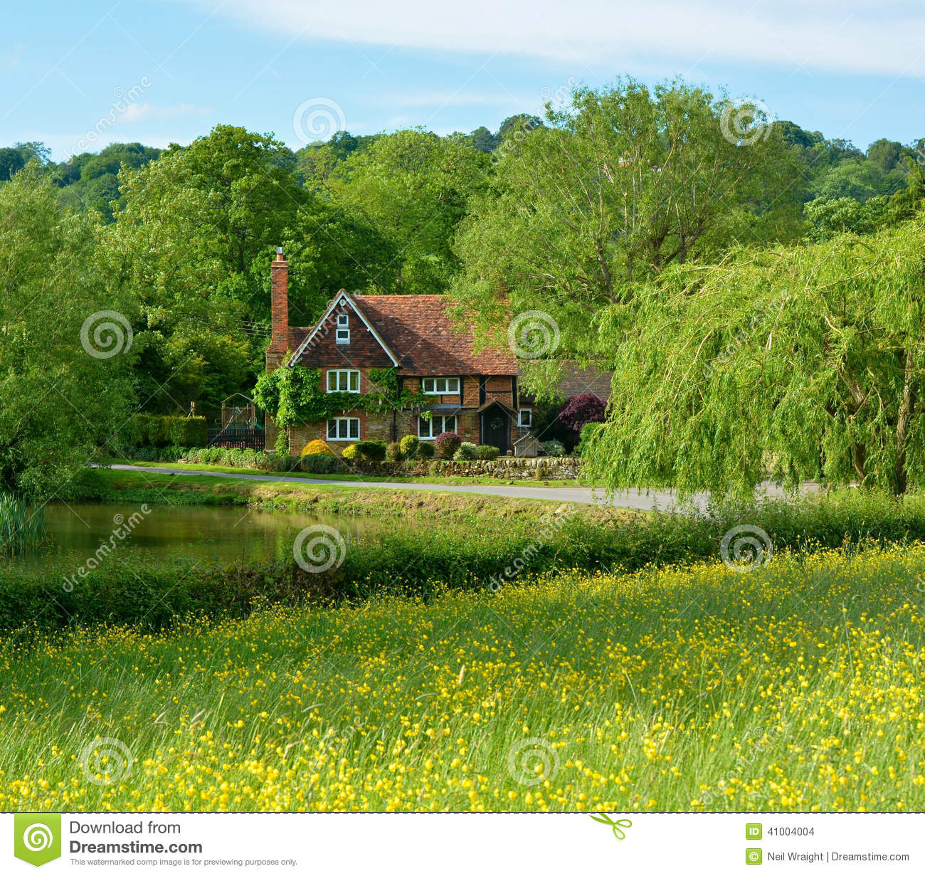 Rural country house with pond stock photo image of for Meadow house