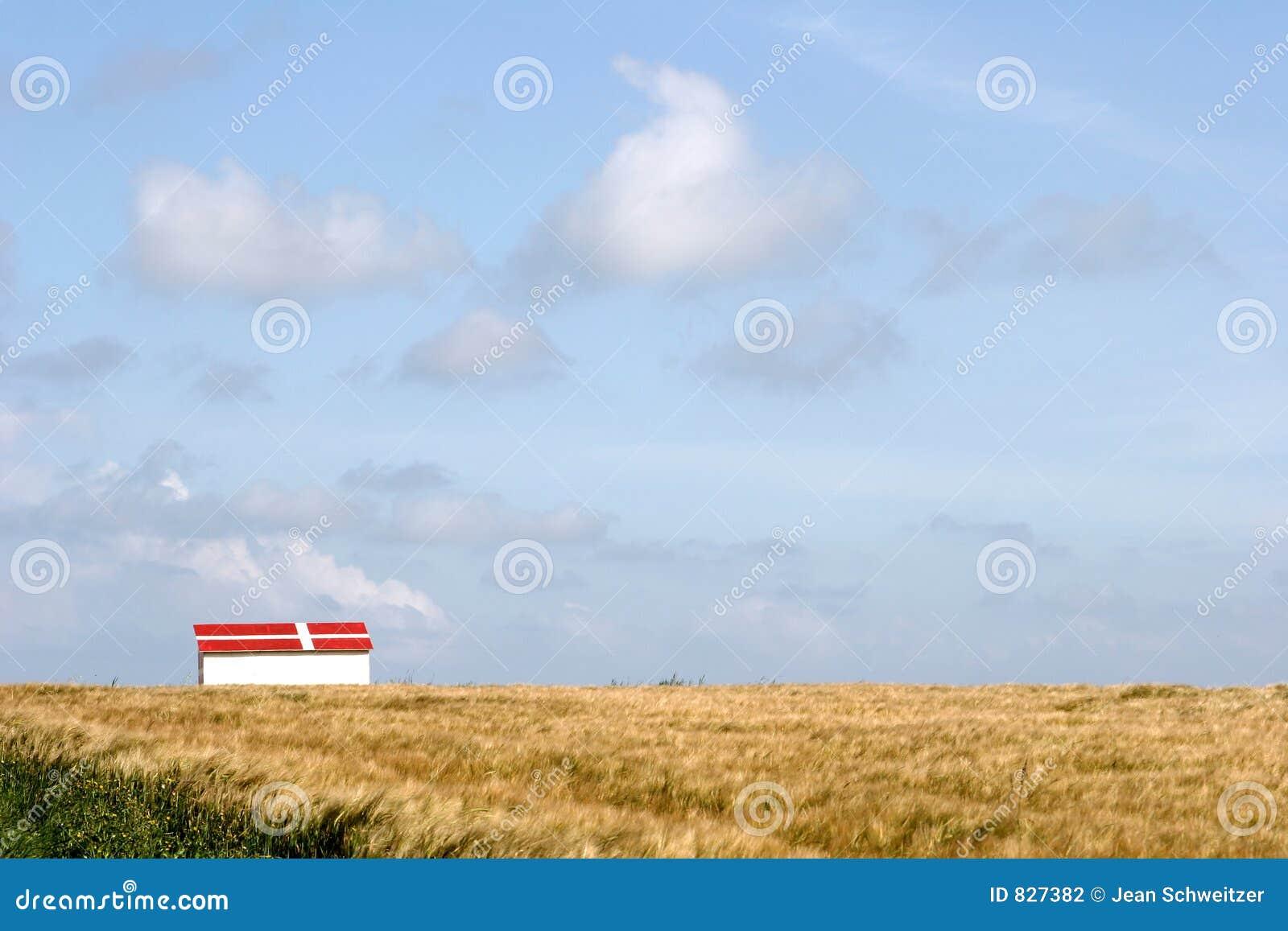 Rural denmark
