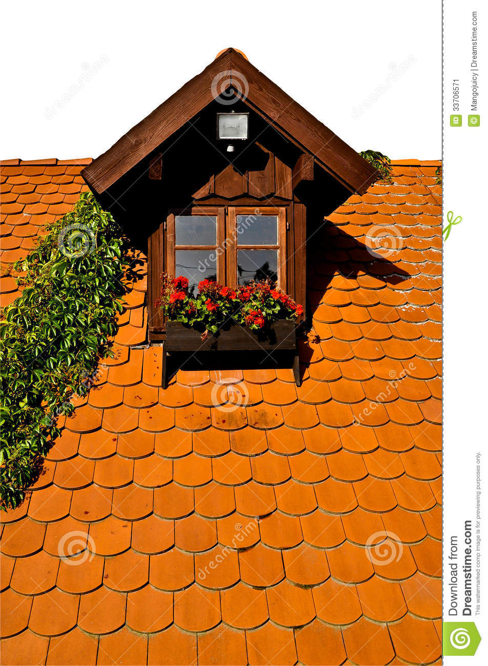 Rural Dormer Window On Roof Flowers And Creeper Plant