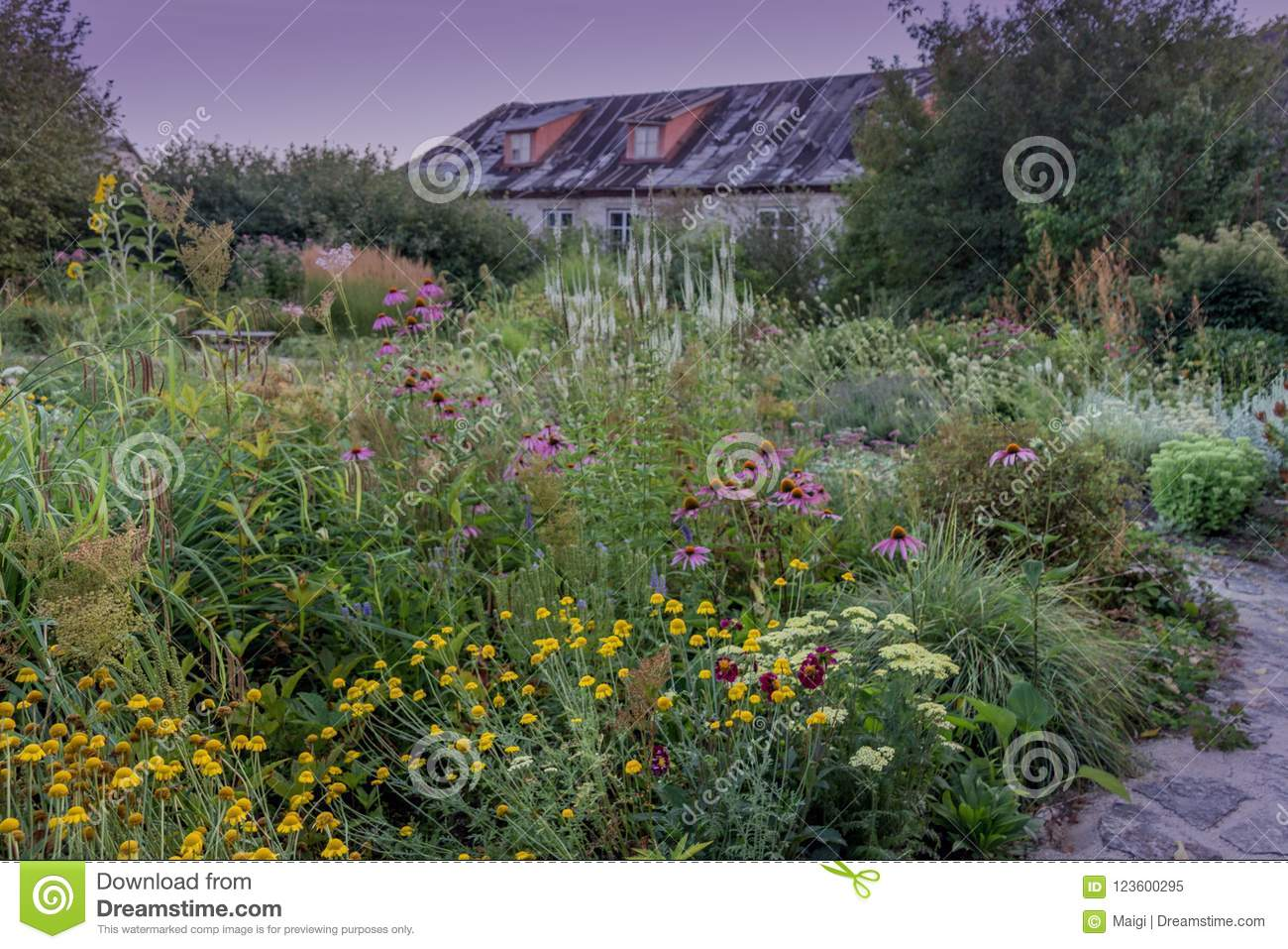 Download Various Flowers In The Garden Stock Image - Image of different, countryside: 123600295