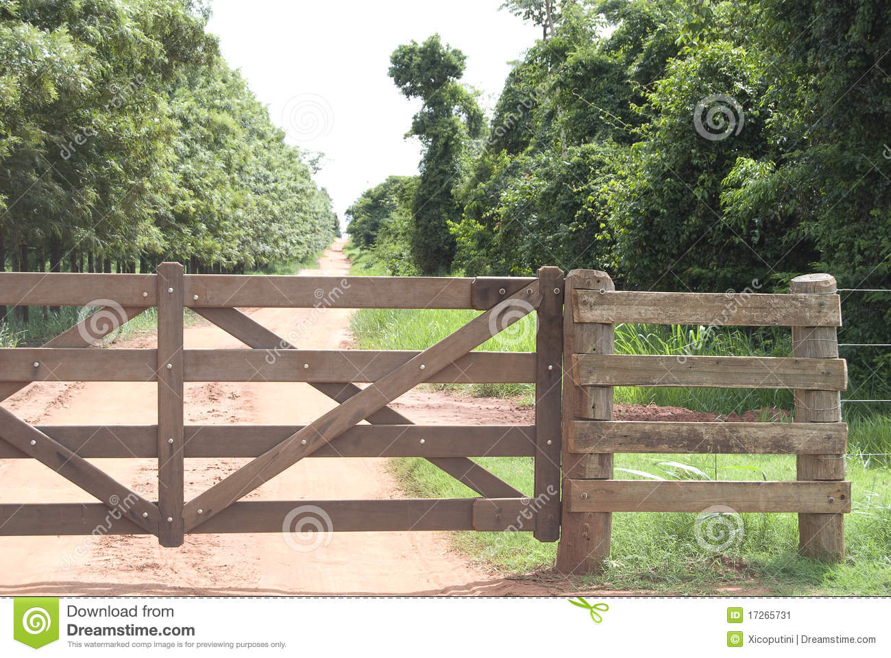 44 Rural Gate Wood Brazilian Farm Photos Free Royalty Free Stock Photos From Dreamstime