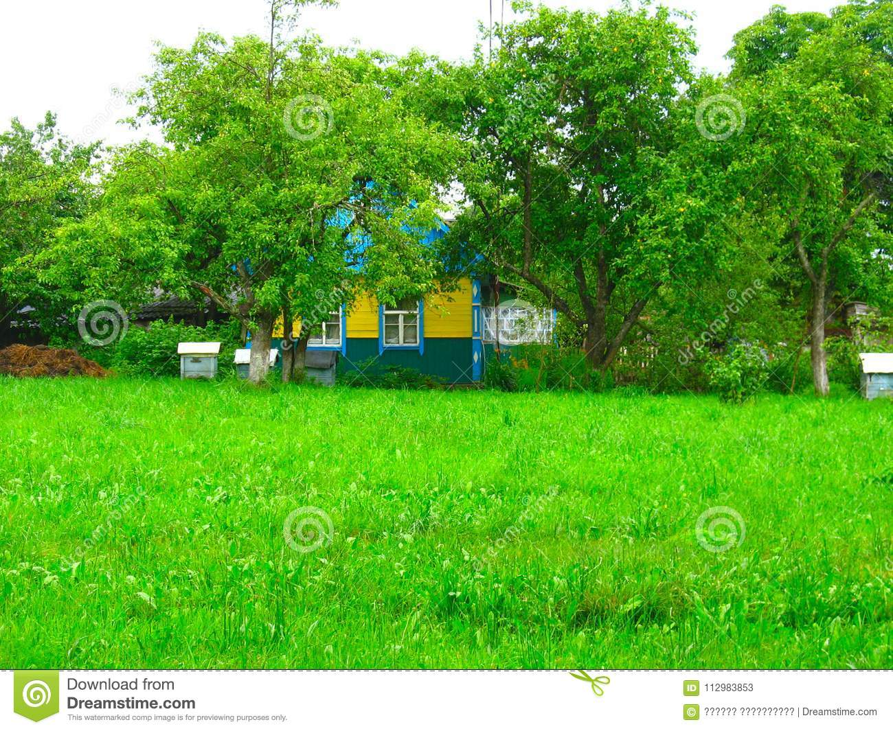 rural hut in the orchard and hives