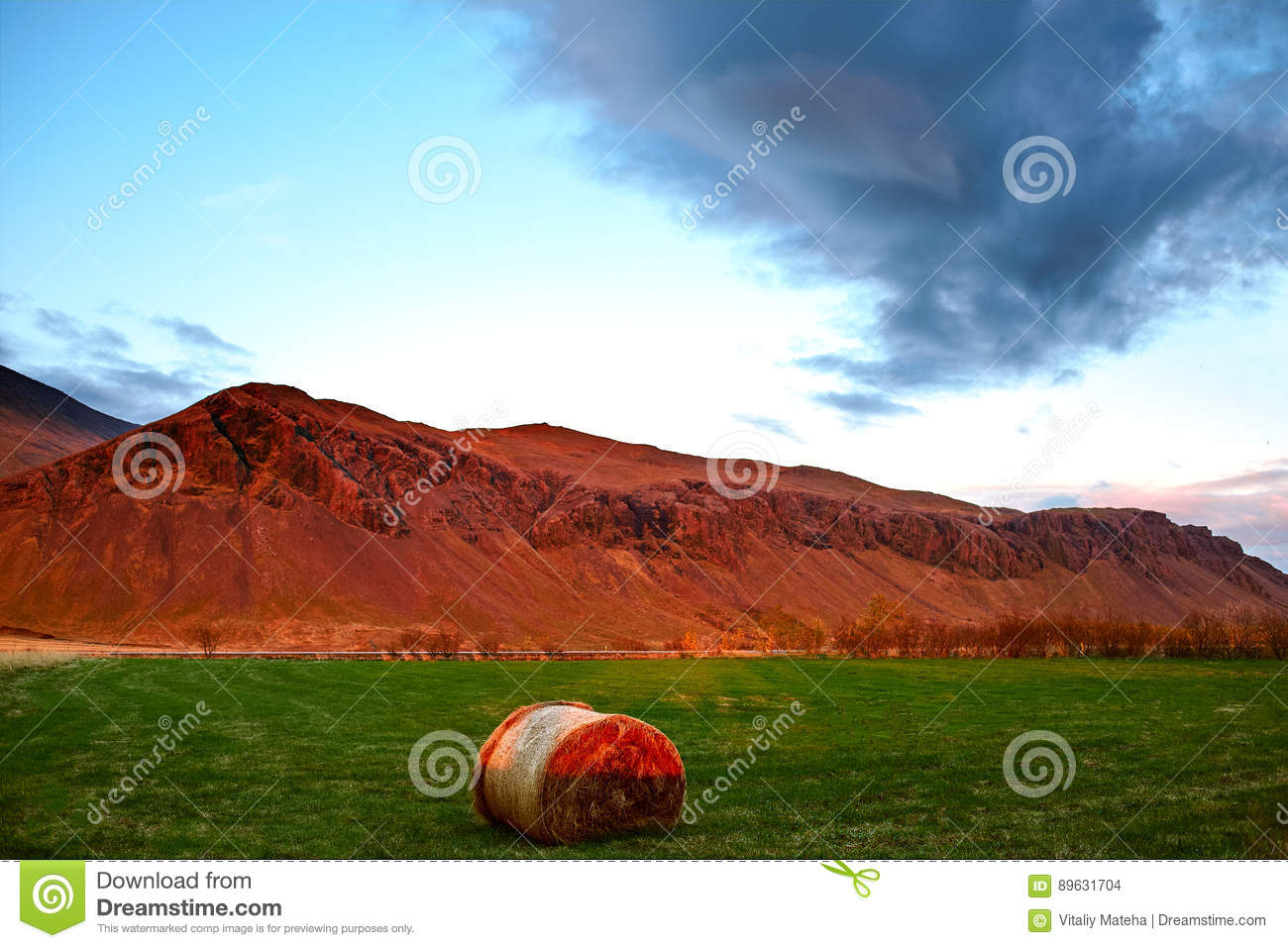 Rural Icelandic Landscaping And Farm Stock Photo - Image ...