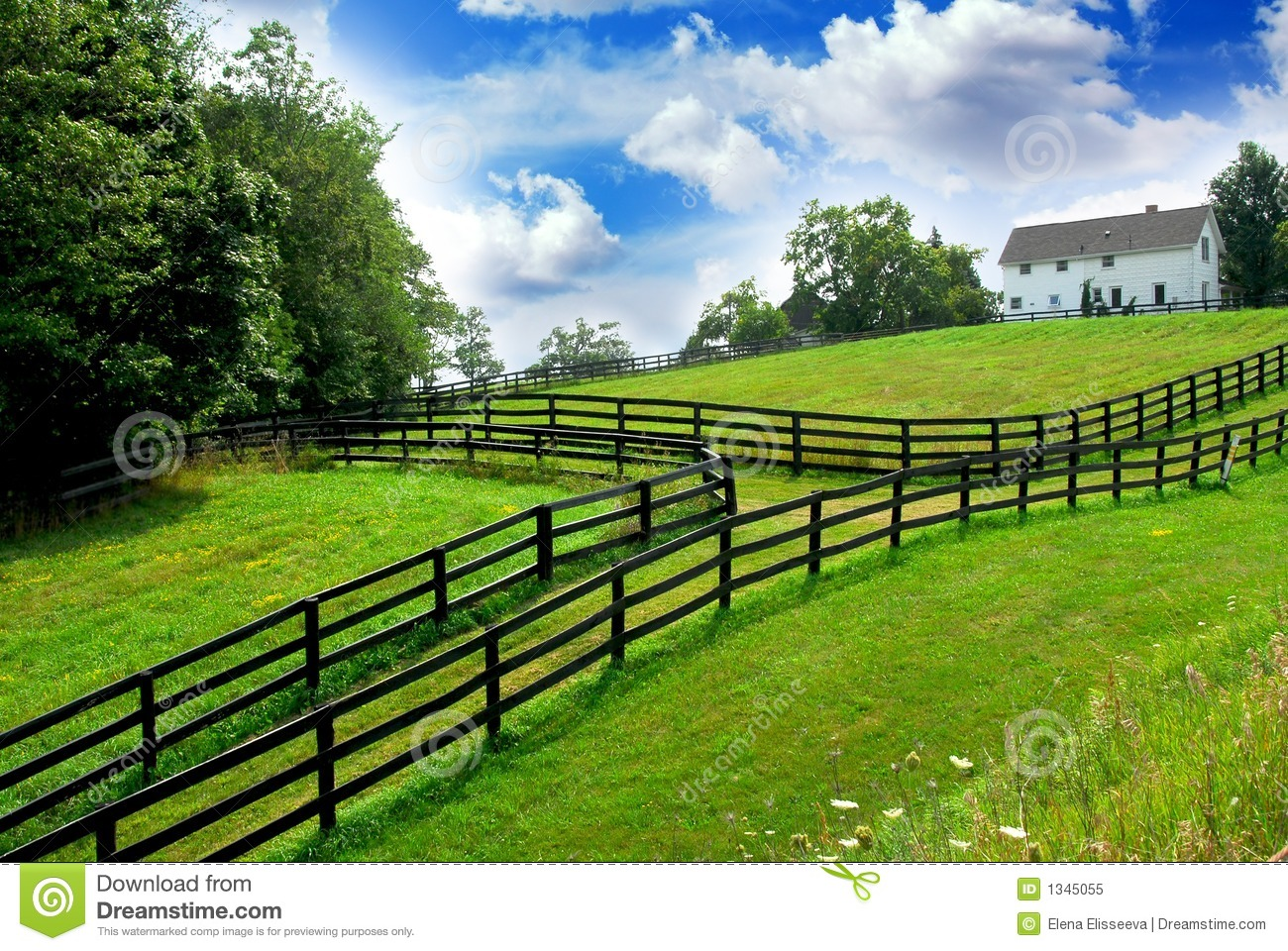 Rural landscape farmhouse royalty free stock photo image for Farm house landscaping