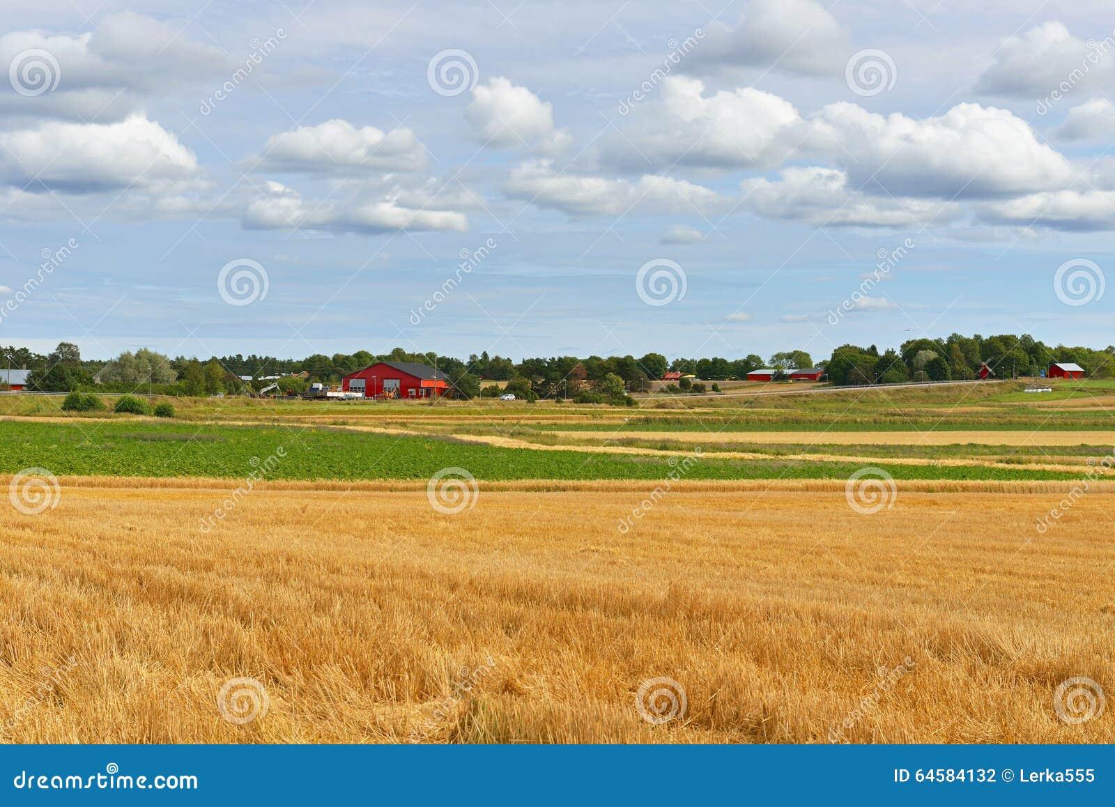 Ryefinland