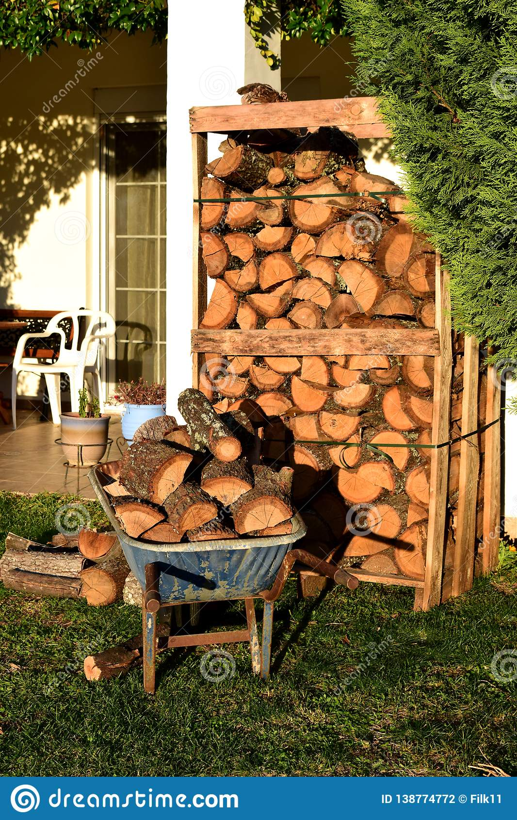 Wheel barrow and pallet full of woods for winter in the garden.