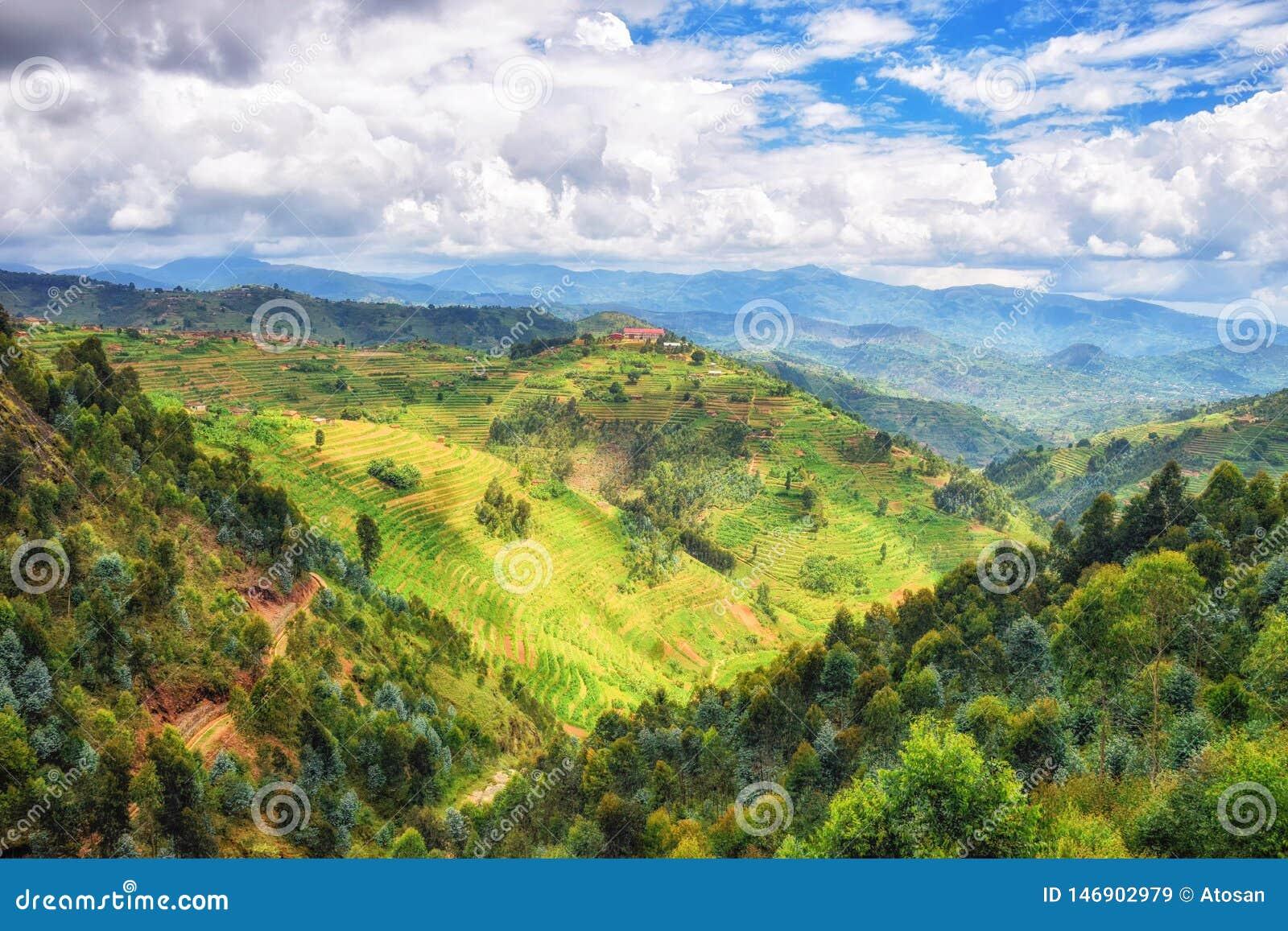 Rural Landscape Rwanda