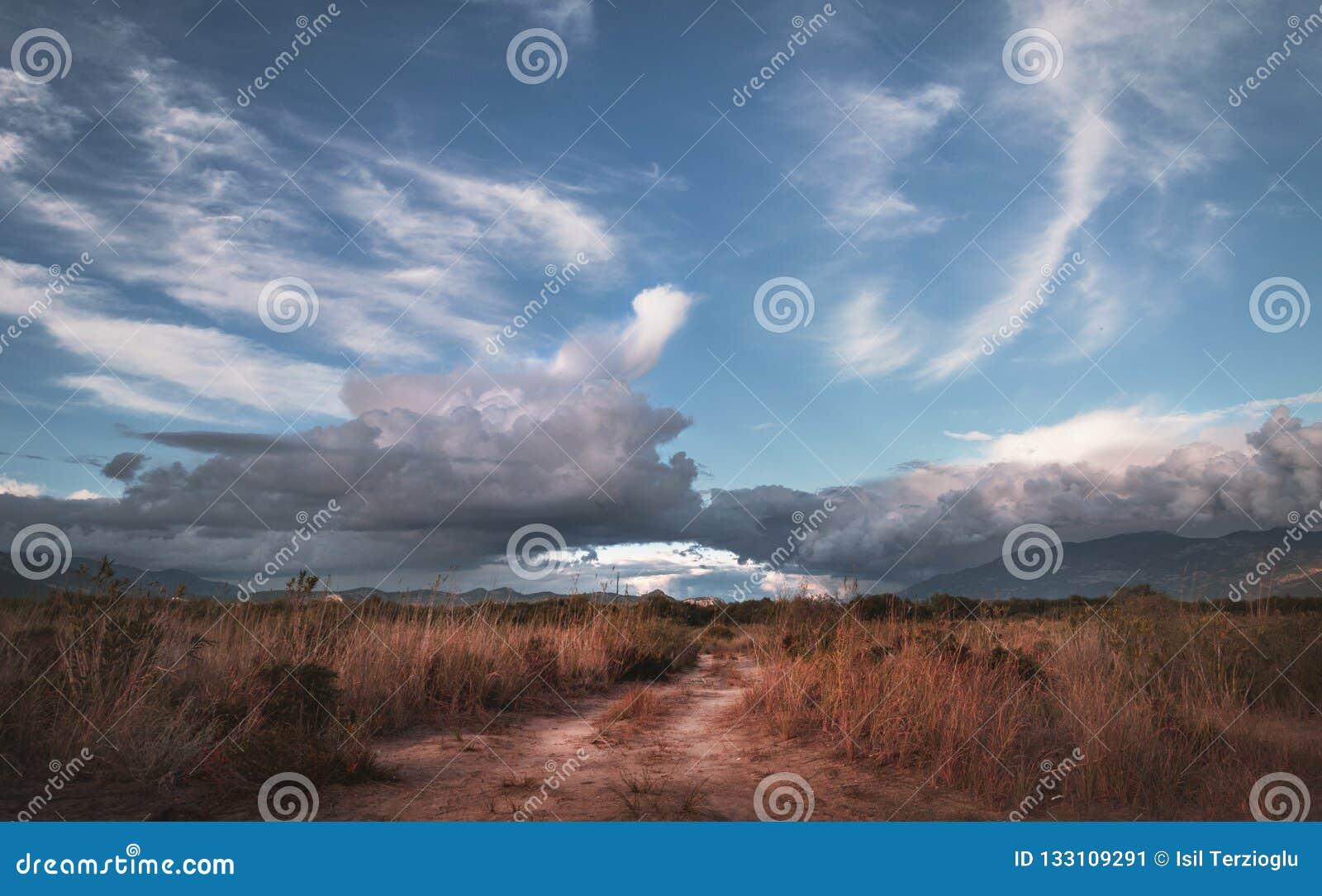 Rural pathway in the grass in Kalkan Patara.