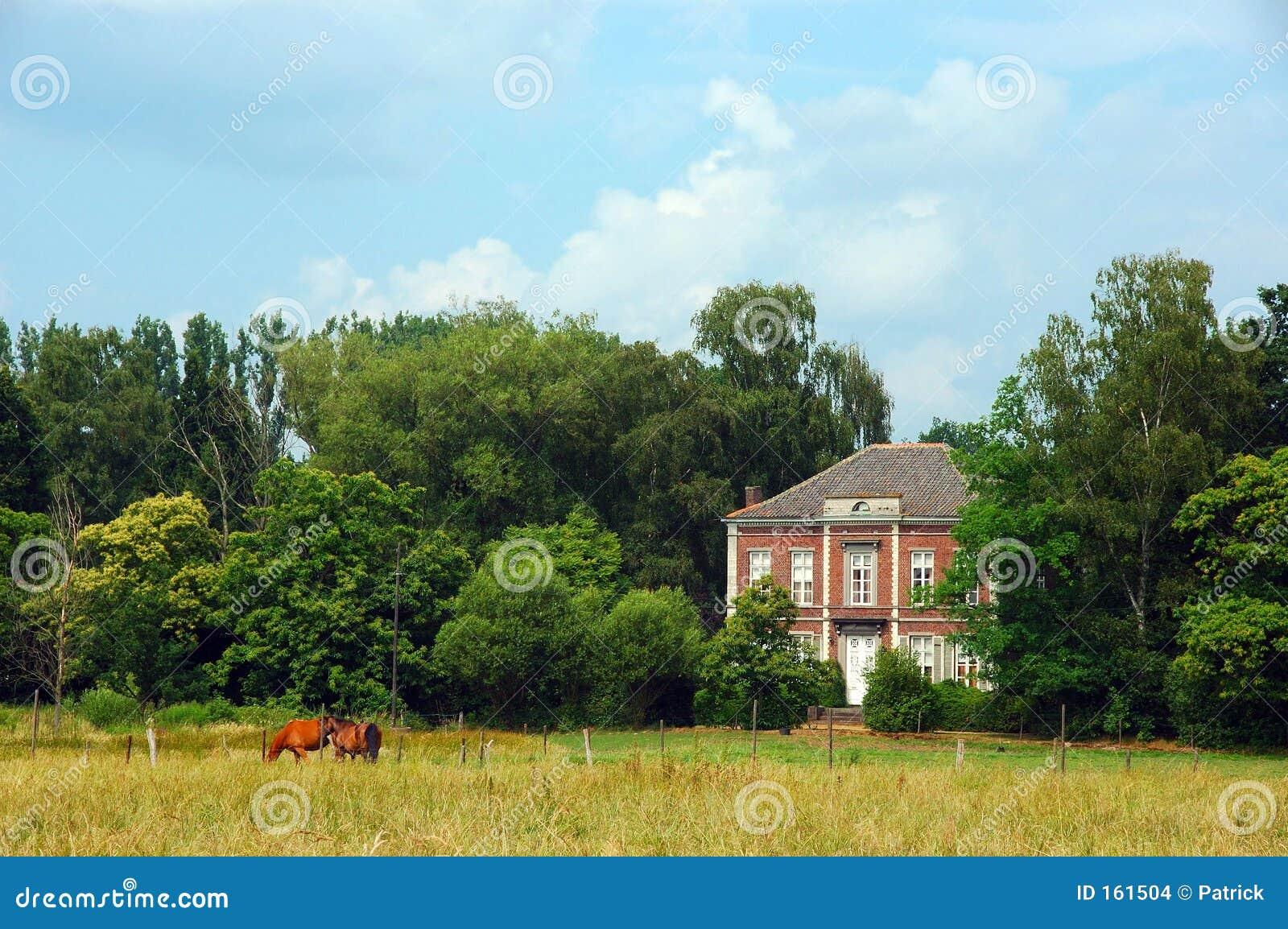 Rural scene.