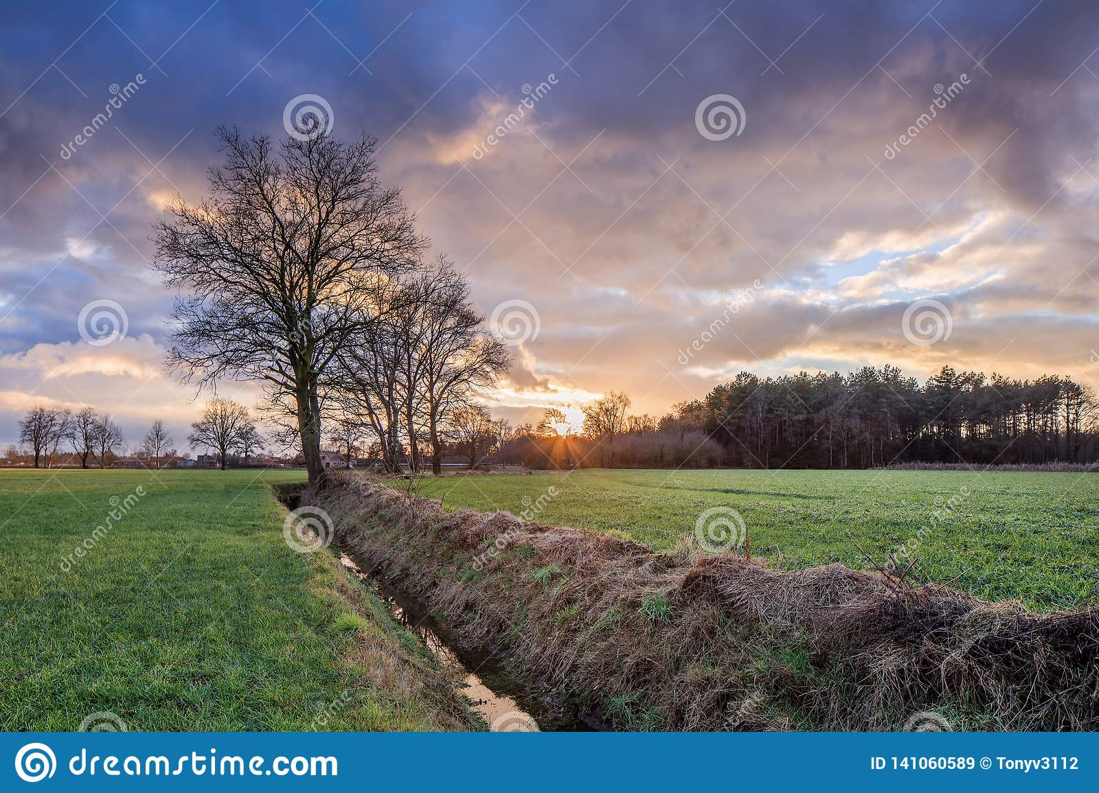 Rural scenery, field with trees near a ditch and colorful sunset with dramatic clouds, Weelde, Belgium