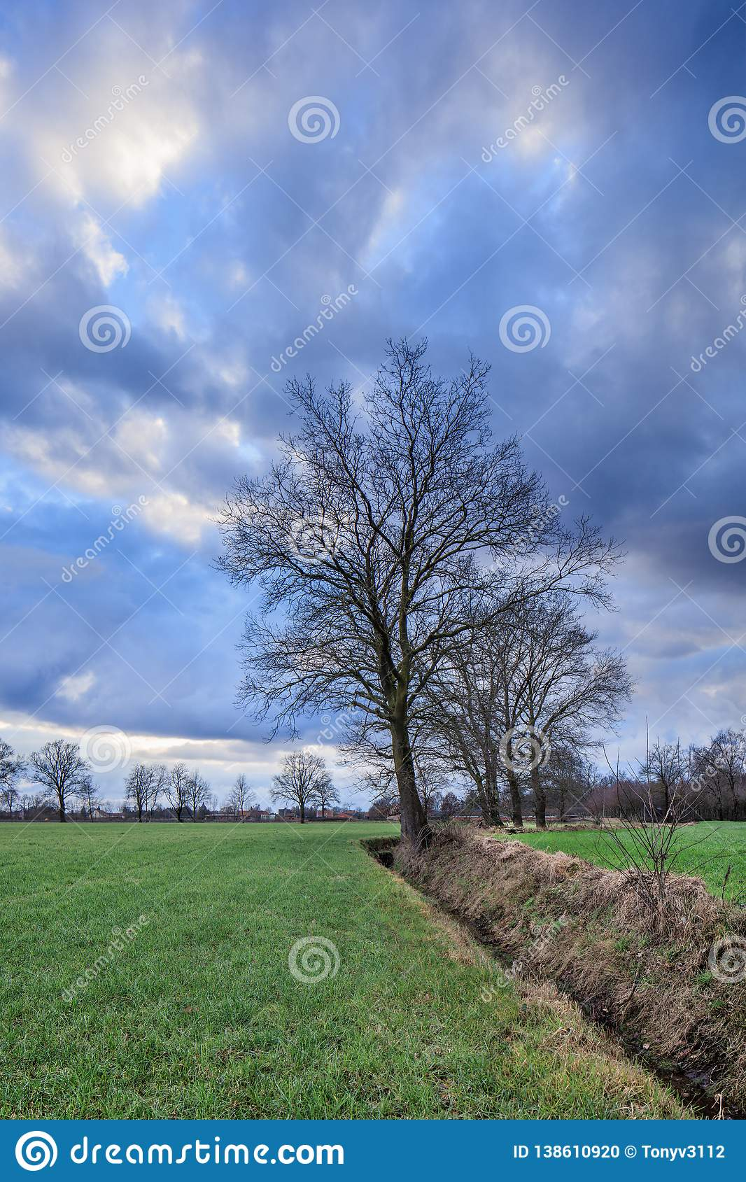 Rural scenery, field with trees near a ditch with dramatic clouds at twilight, Weelde, Flanders, Belgium