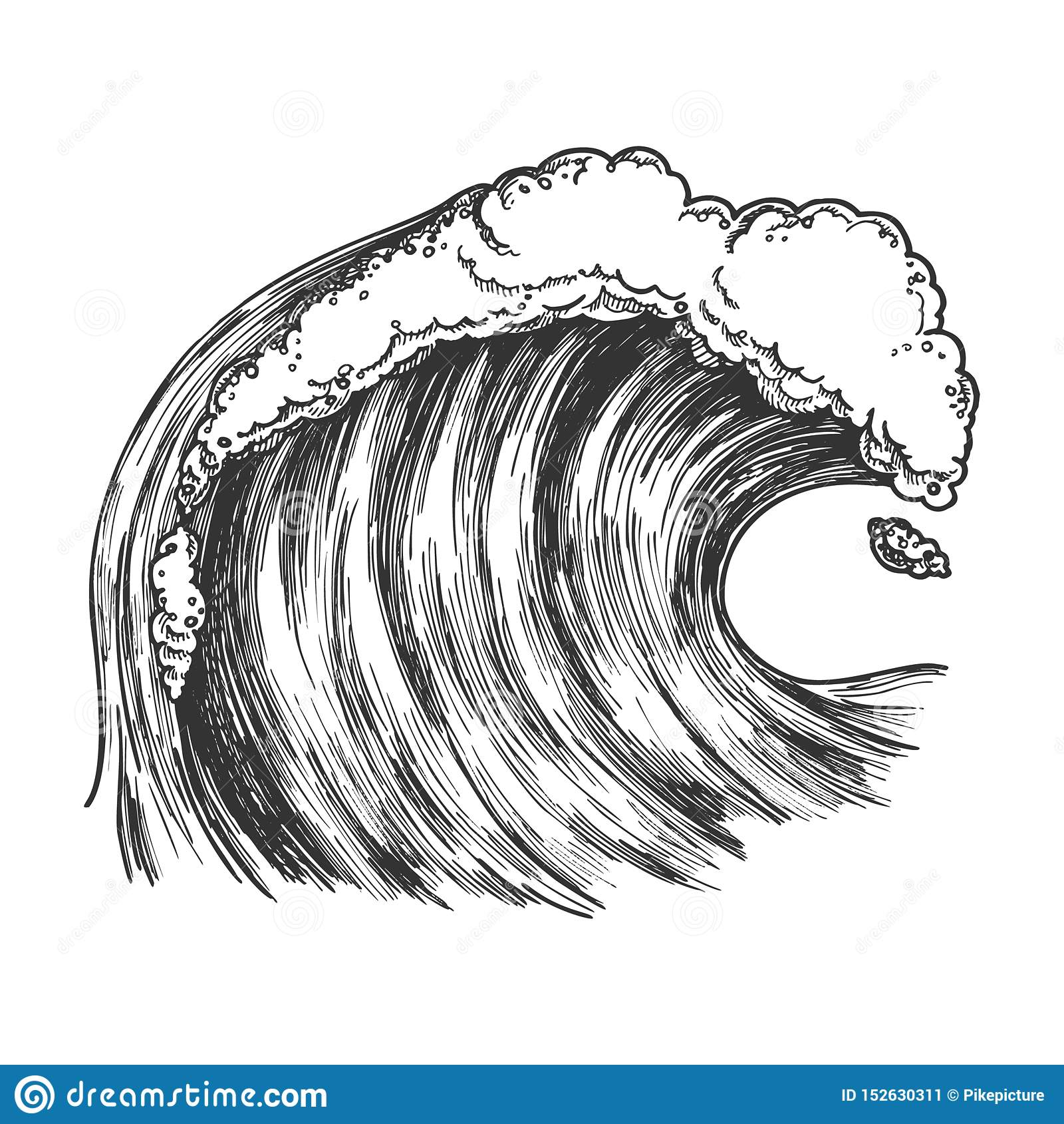 Rushing Foamy Tropical Ocean Marine Wave Vector