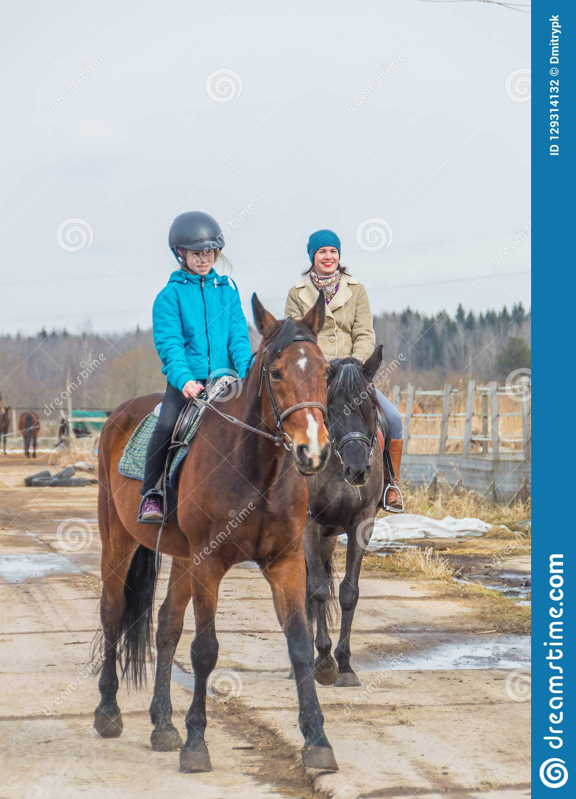 Russia Leningrad Region Nikolskoye March 25 2017 At The Stable Horse Riding Girls Editorial Photography Image Of Brown Green 129314132