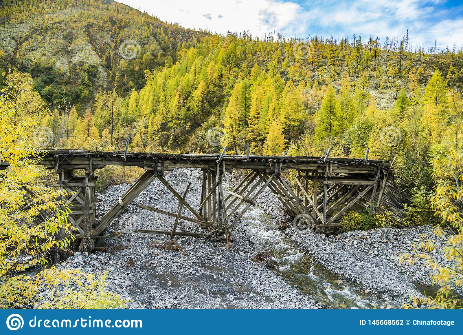 Russia. Nature of the Far East: Wooden bridge on the forest road