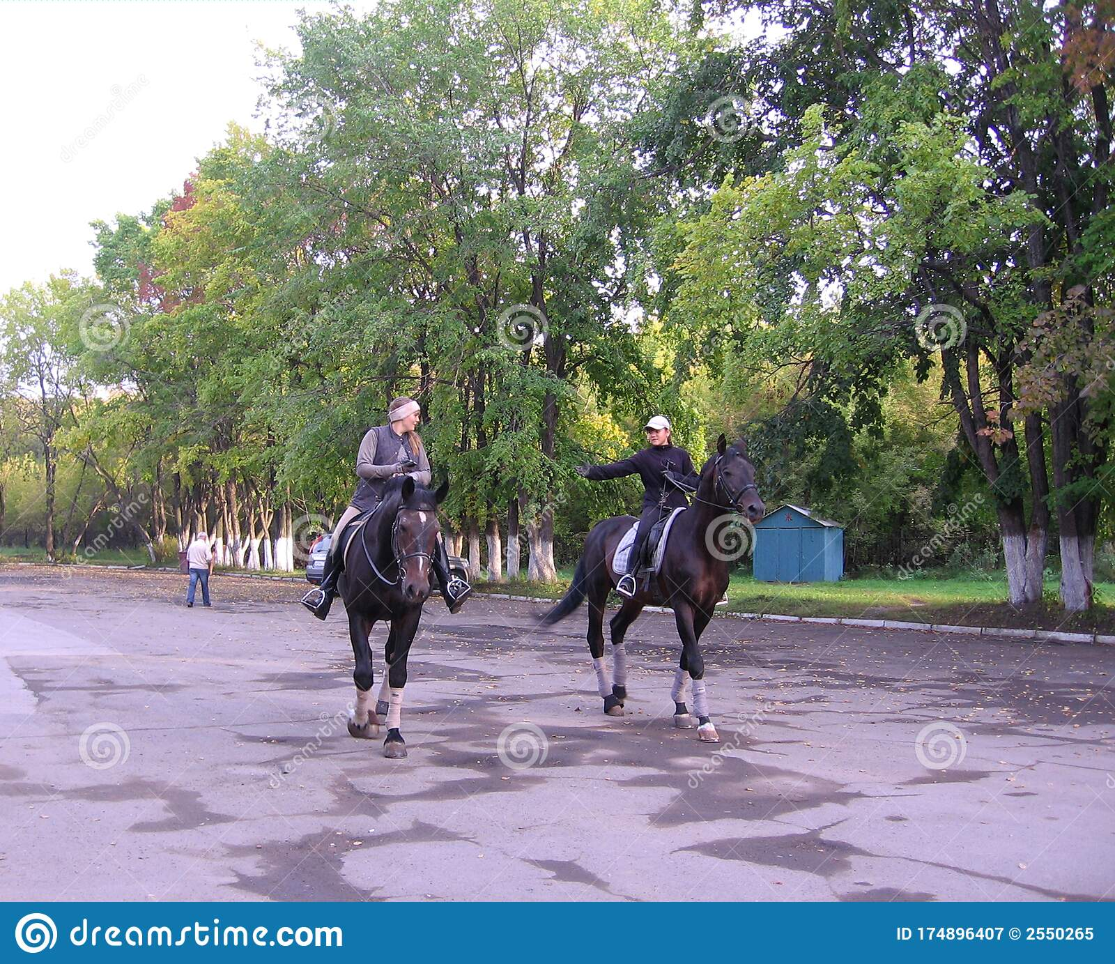 Two Girls Riding Horses In The Park In The Autumn Editorial Photography Image Of Park Summer 174896407