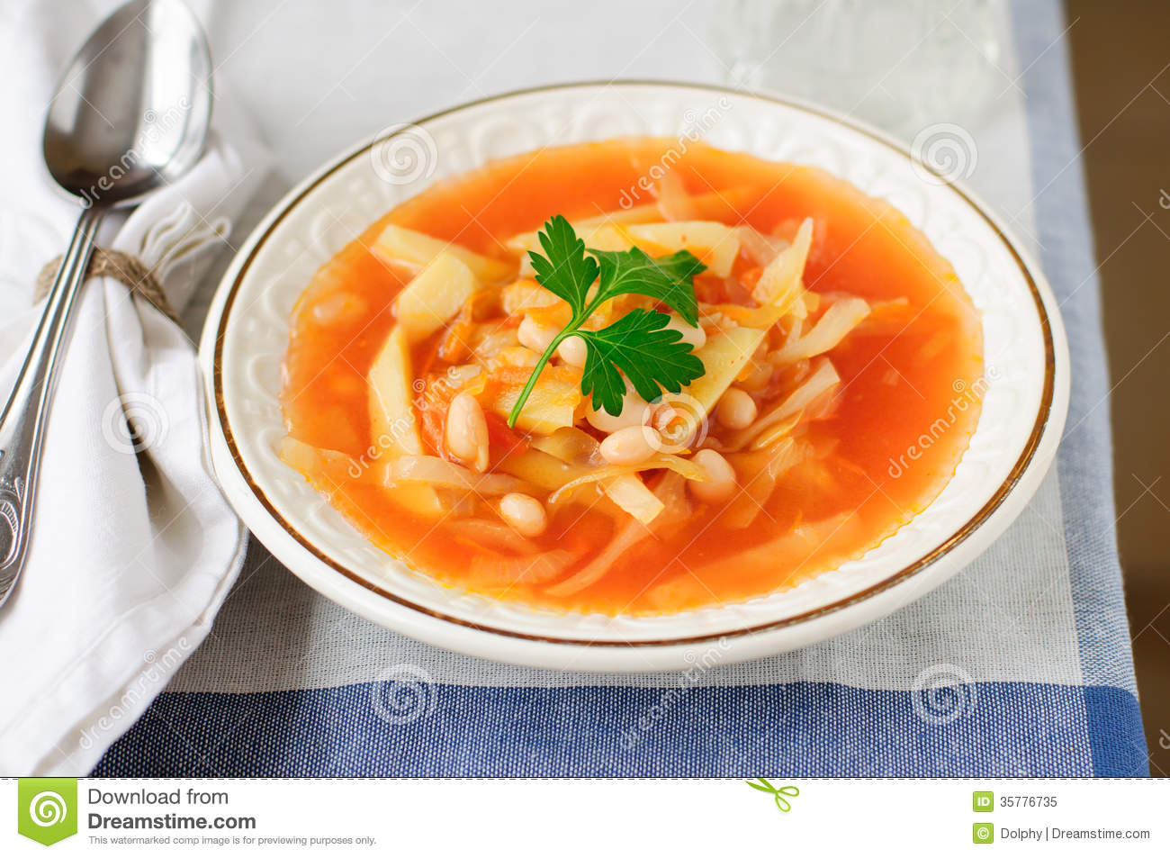 Russian Cabbage Soup, Shchi (Stchi) Royalty Free Stock ...