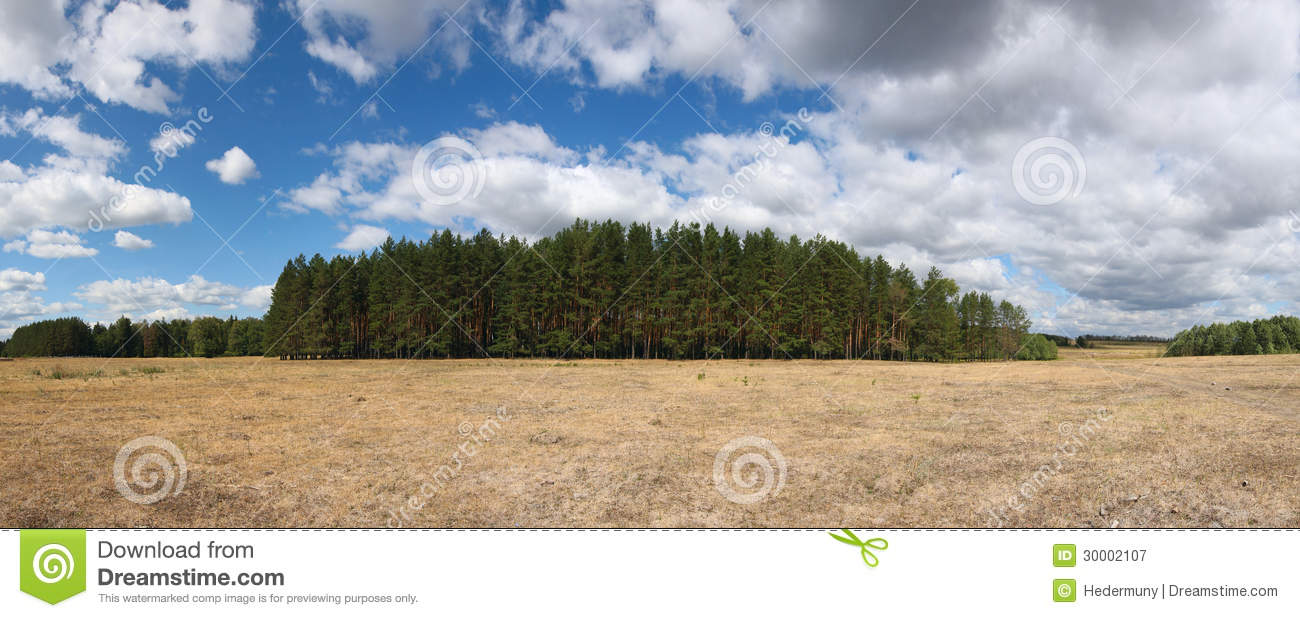 Royalty free stock photography: russian summer landscape