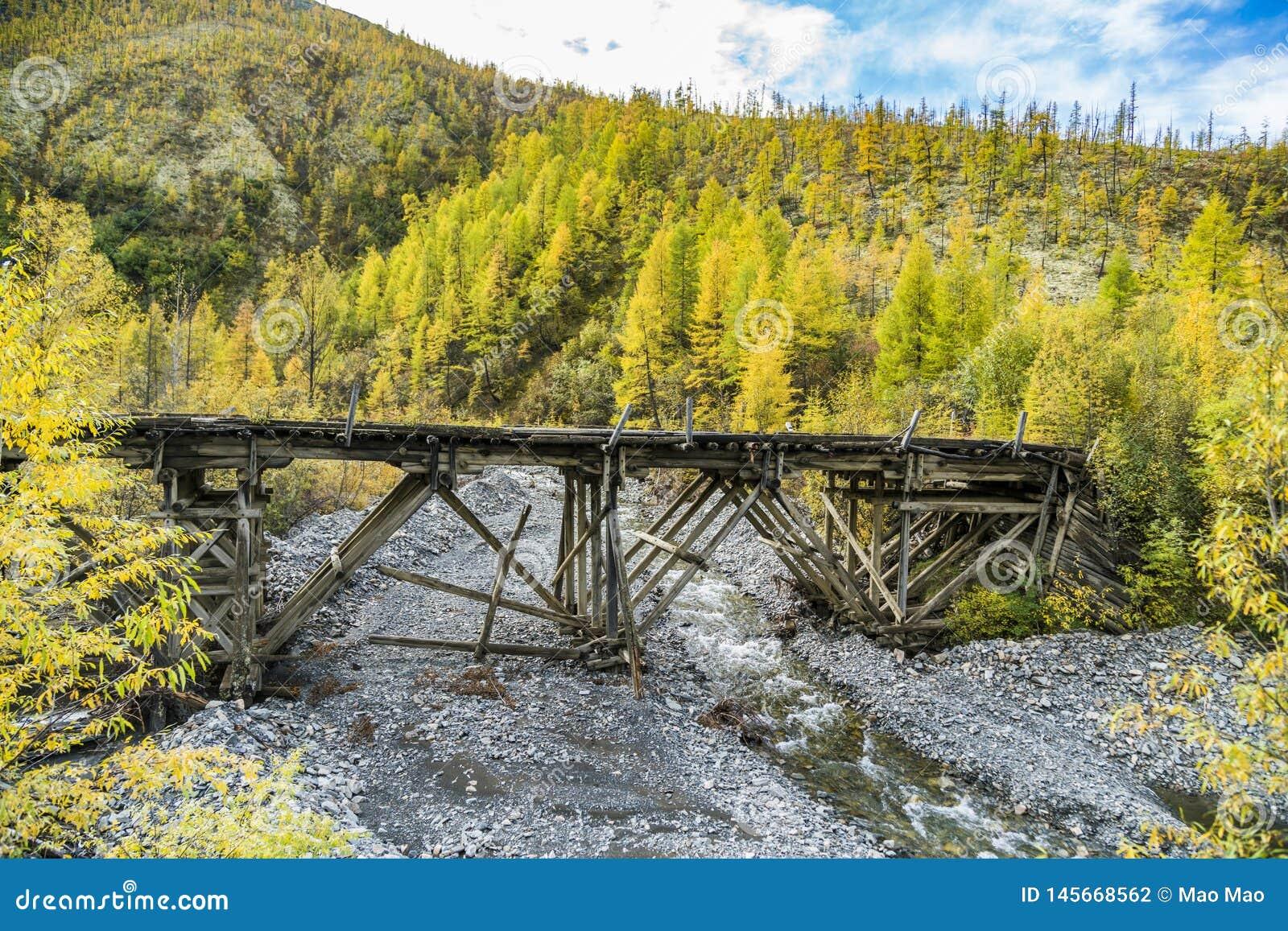 Russie Nature de l Extr?me Orient : Pont en bois sur le chemin forestier
