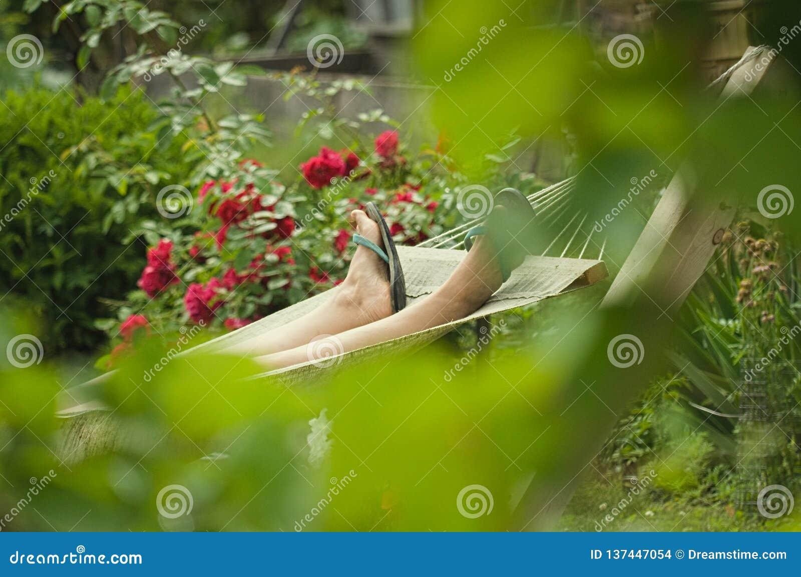 Rust in een hangmat onder rozen