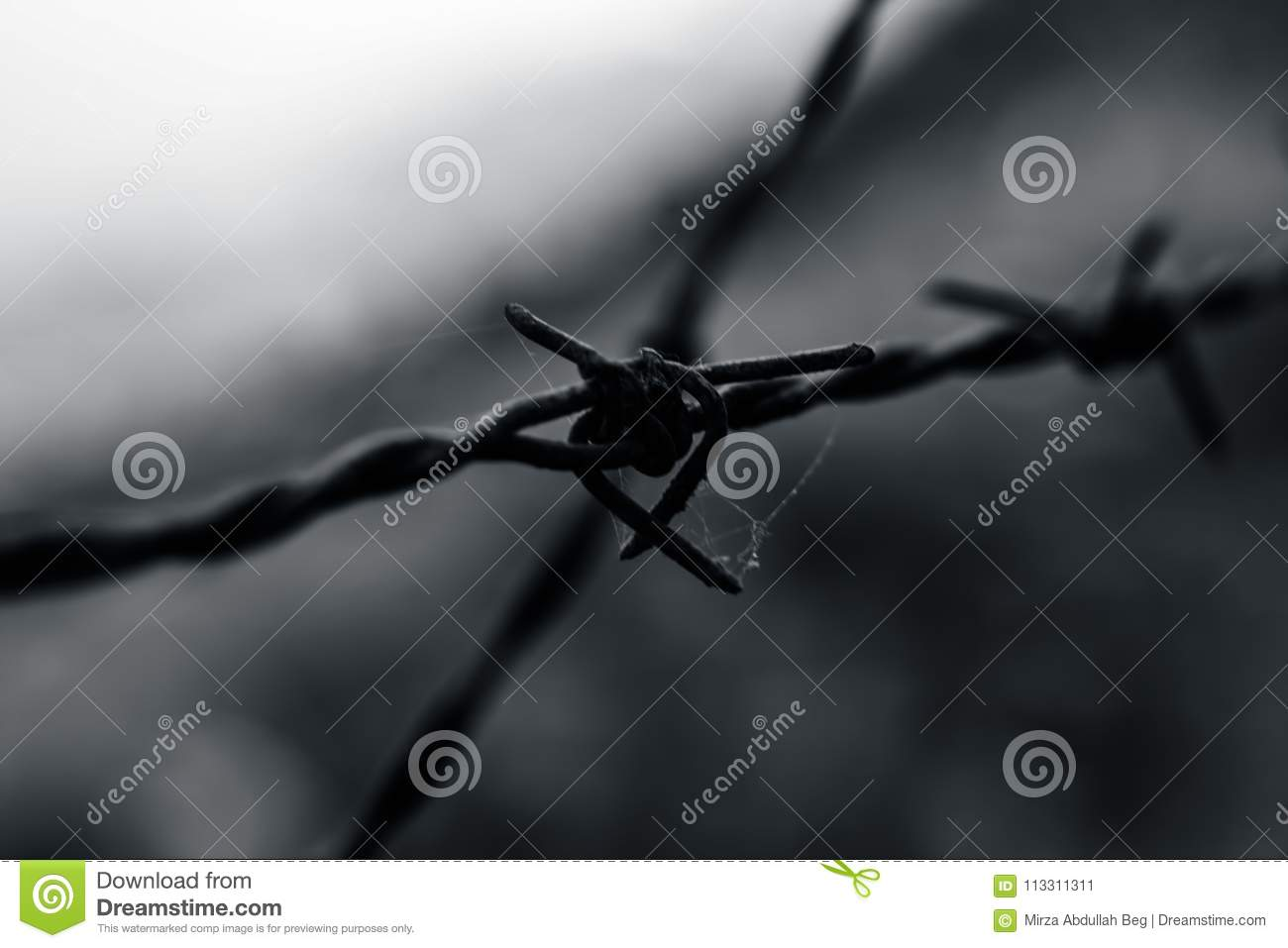 Close Up Of Rusted Barbed Wire. Stock Image - Image of prevent ...