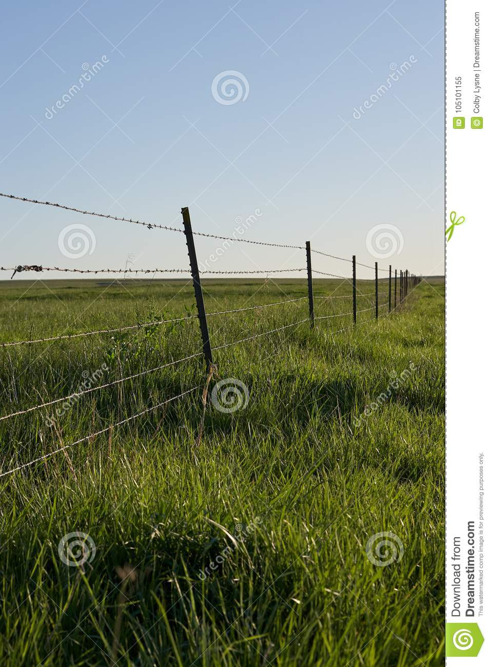 Rustic Barbed Wire Fence In A Lush Green Pasture Stock Image - Image ...