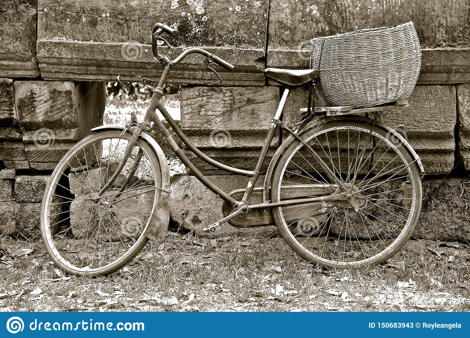 Rustic bike with basket