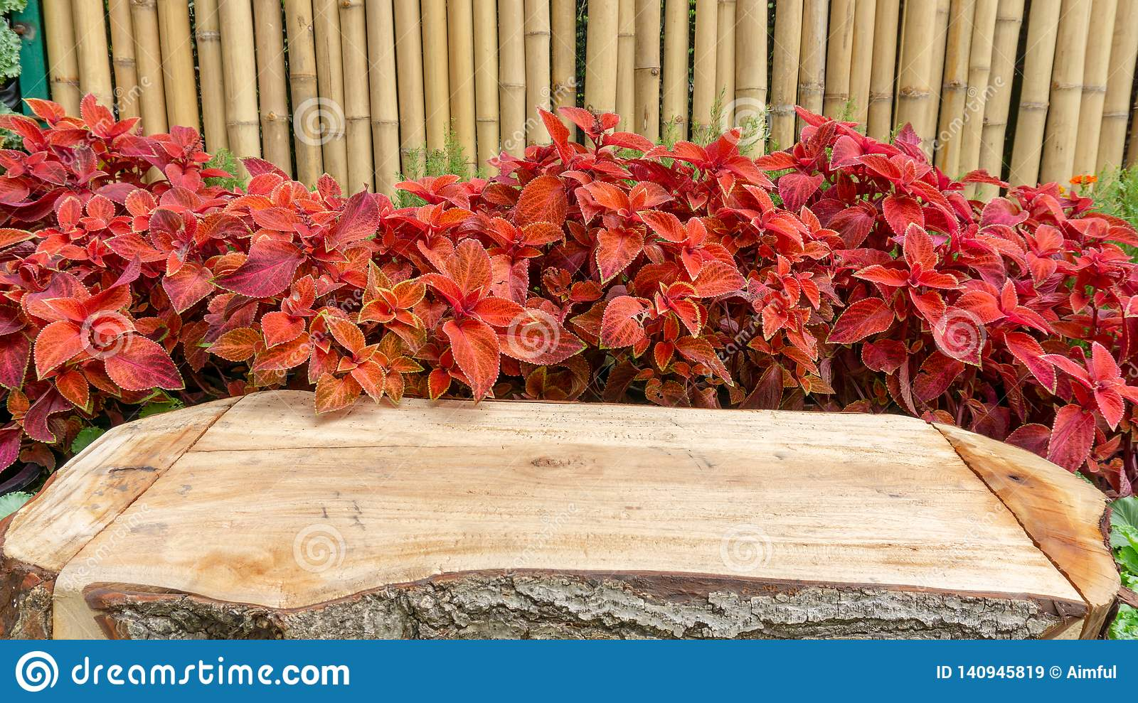 Rustic brown wooden table on red leaves of Painted nettle or Colues plant and yellow bamboo trunk on background