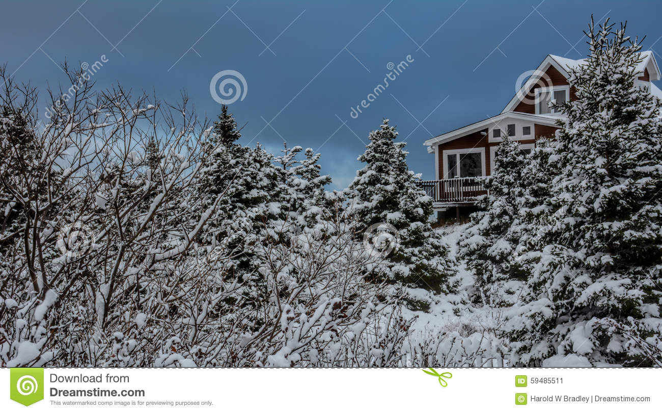 Rustic cabin in woods avalon peninsula in newfoundland for Cabins in newfoundland