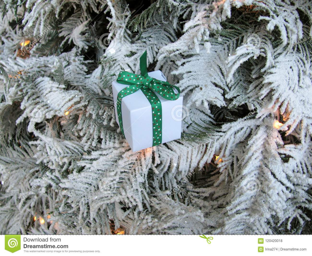 Rustic Christmas Decoration Hanging Over White Tree Stock Photo Image Of Ribbon Rustic 120420018