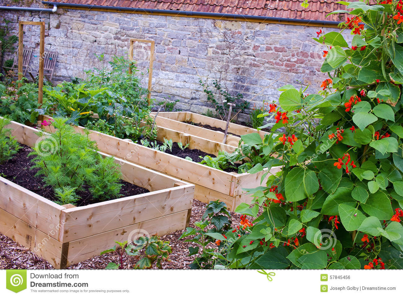 Raised Garden Bed With Flowers And Vegetable Plants Royalty Free ...