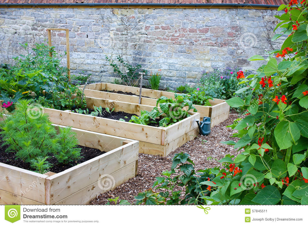 Rustic country vegetable flower garden with raised beds stock photo image 57845511 - Rustic flower gardens ...