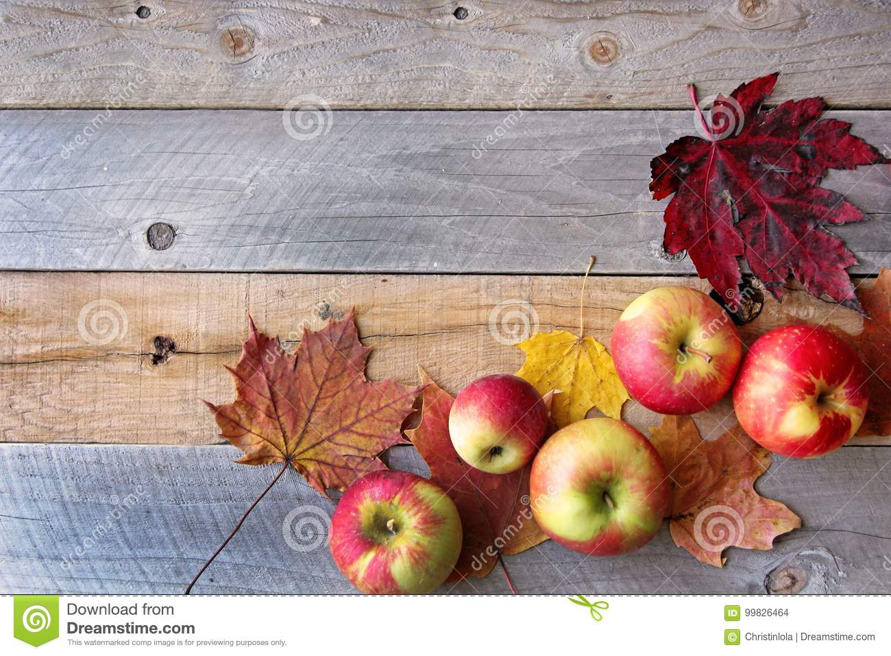 Rustic Fall Decor Of Maple Leaves And Apples Frame A Weathered W
