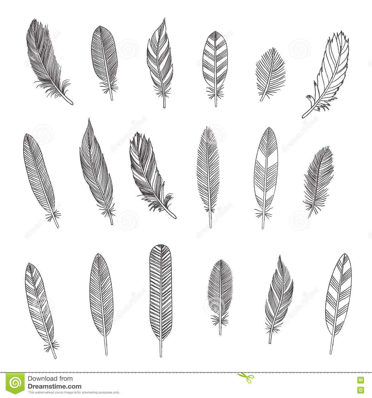 Rustic Feathers Stock Vector Illustration Of Tribal