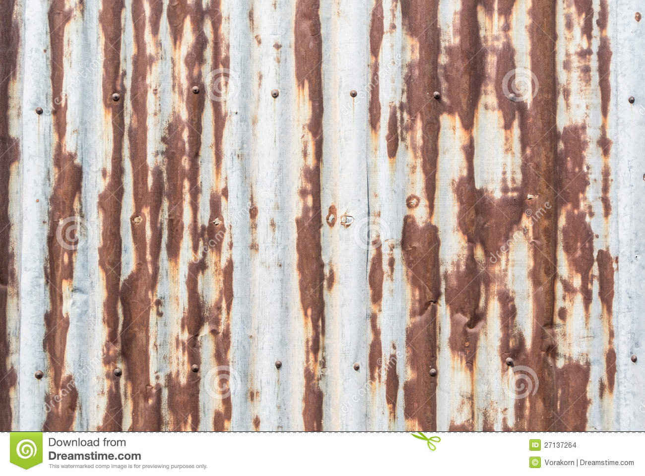 Rustic Galvanized Sheet Wall With Nail Stock Photo - Image ...