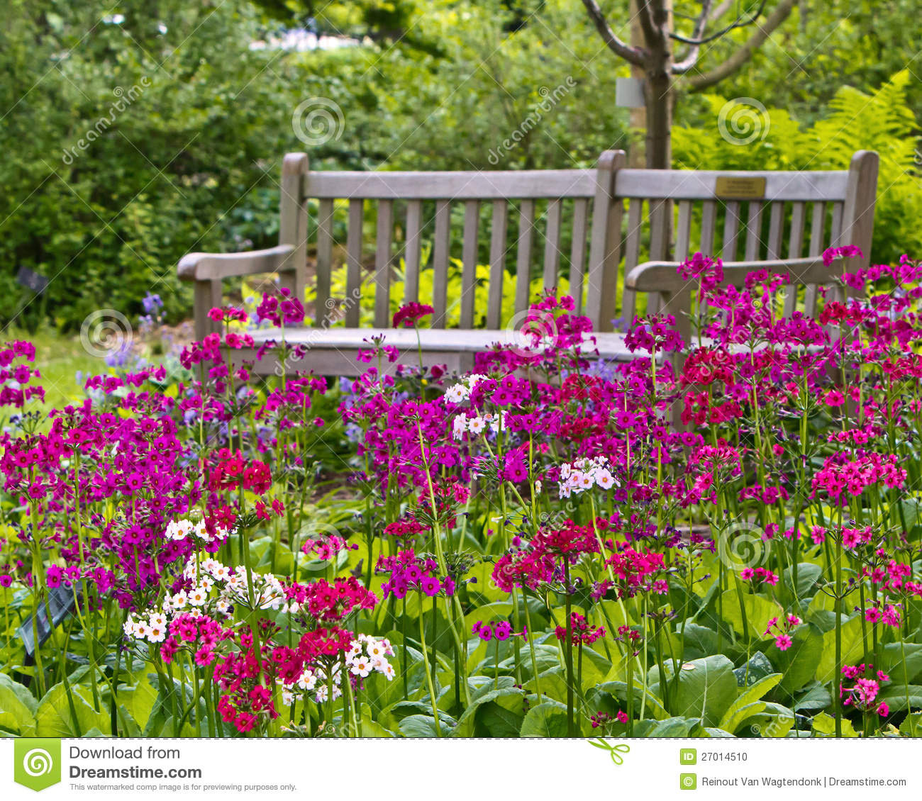 Rustic garden bench stock photo image of cheer cheery for Garden pictures