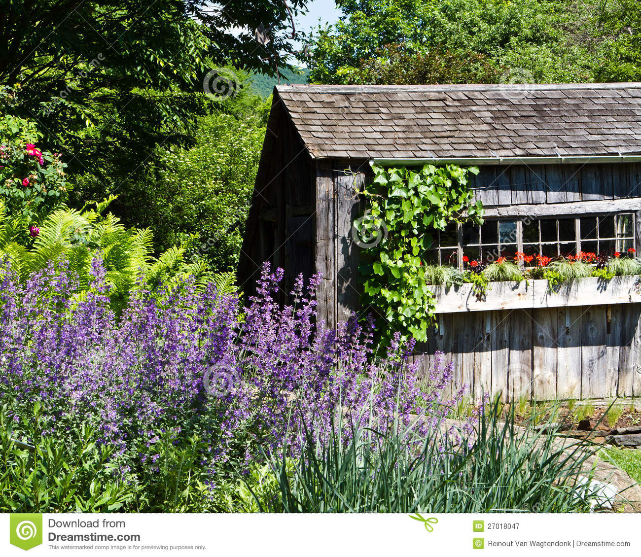 Rustic Garden Shed With Flower Boxes