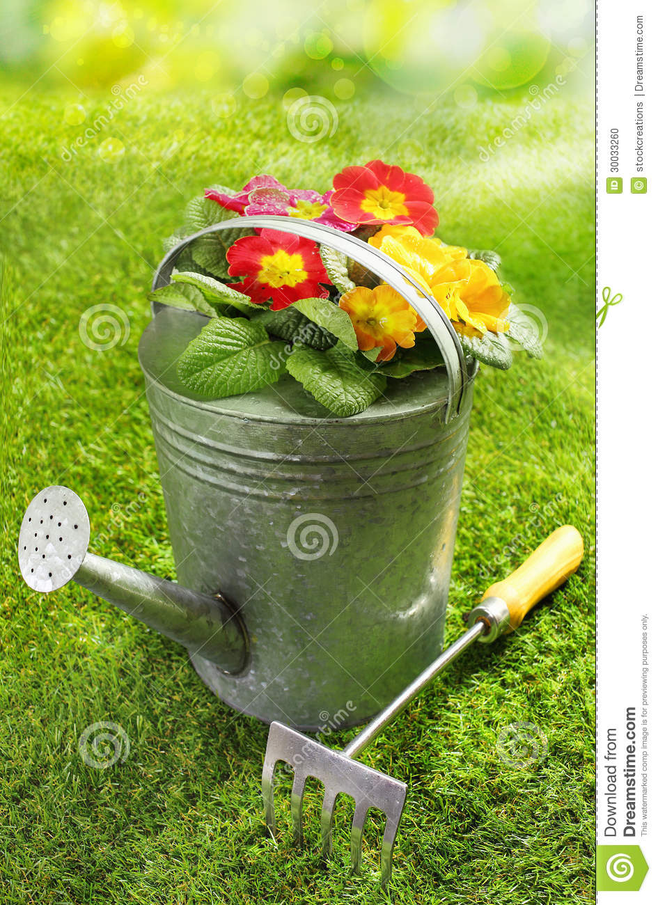 Rustic metal watering can with flowers stock photo image for Ladies small garden fork