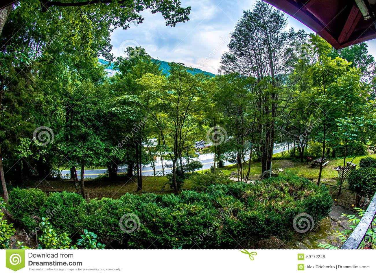 Rustic log cabin in the mountains royalty free stock image for Cabine colorado aspen