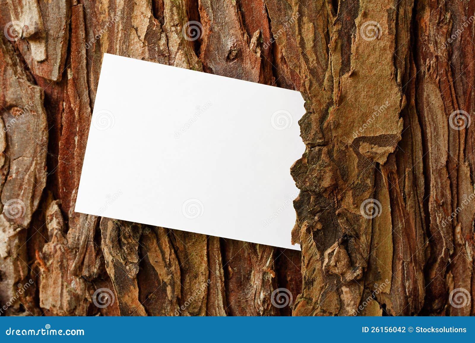 Rustic Tree Bark Border Stock Photo Image Of Bark Timber