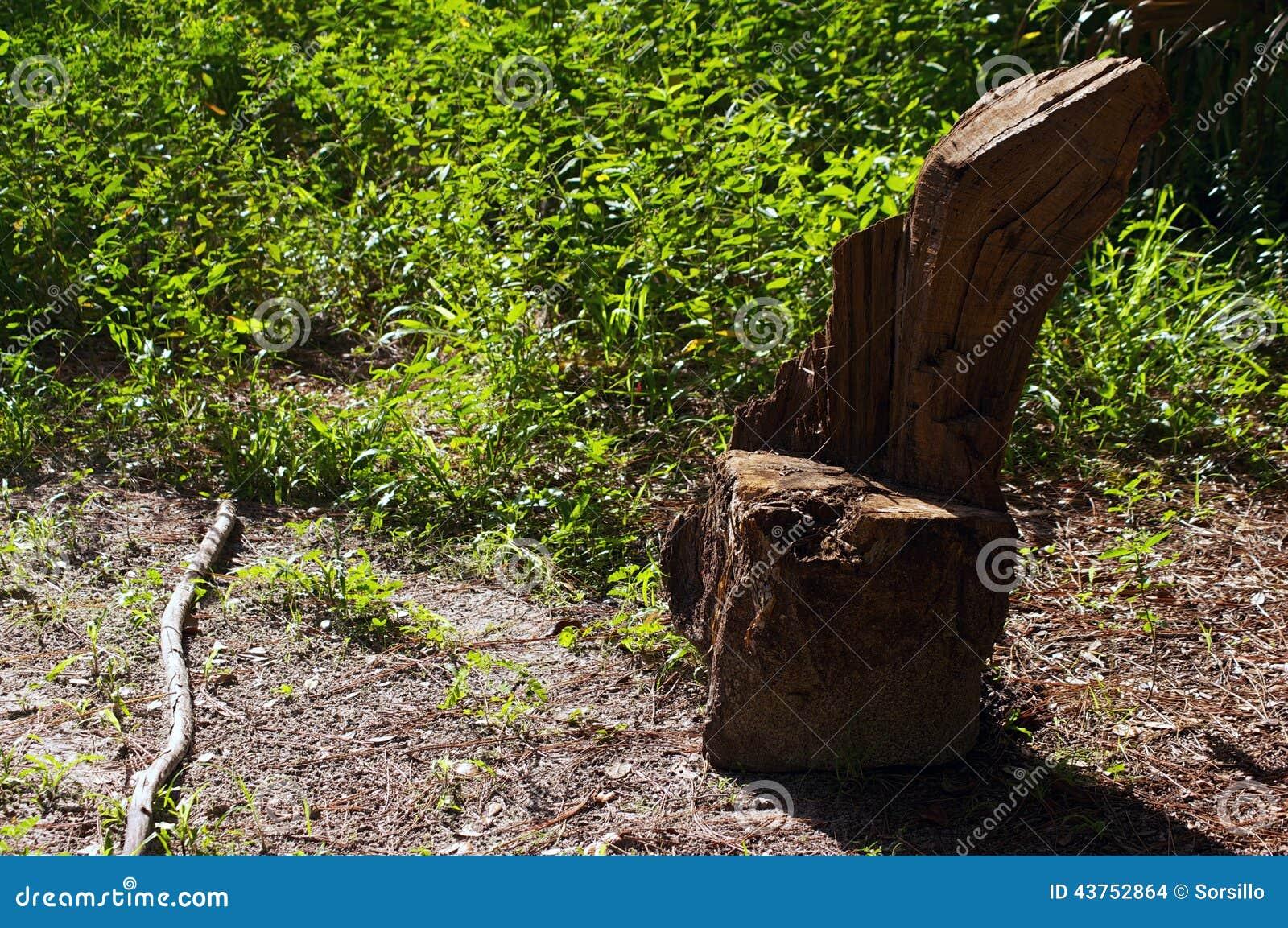 Tree Stump Seats Rustic Tree Stump Seat Stock Photo Image 43752864