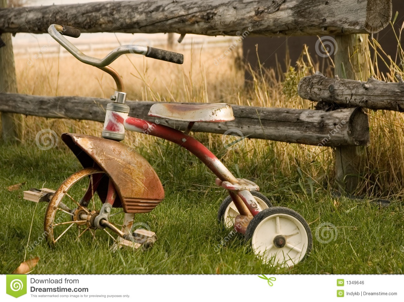 Rustic Tricycle