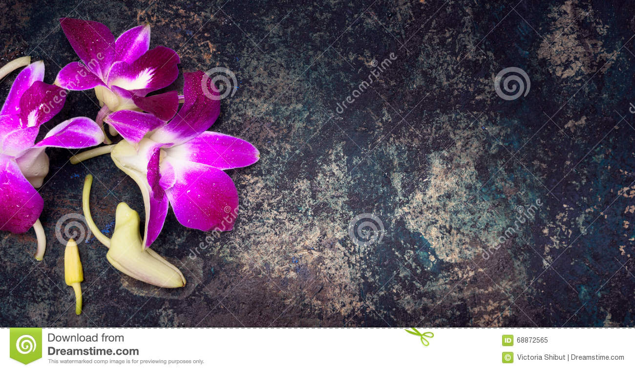 Rustic vintage background with pink orchid flowers