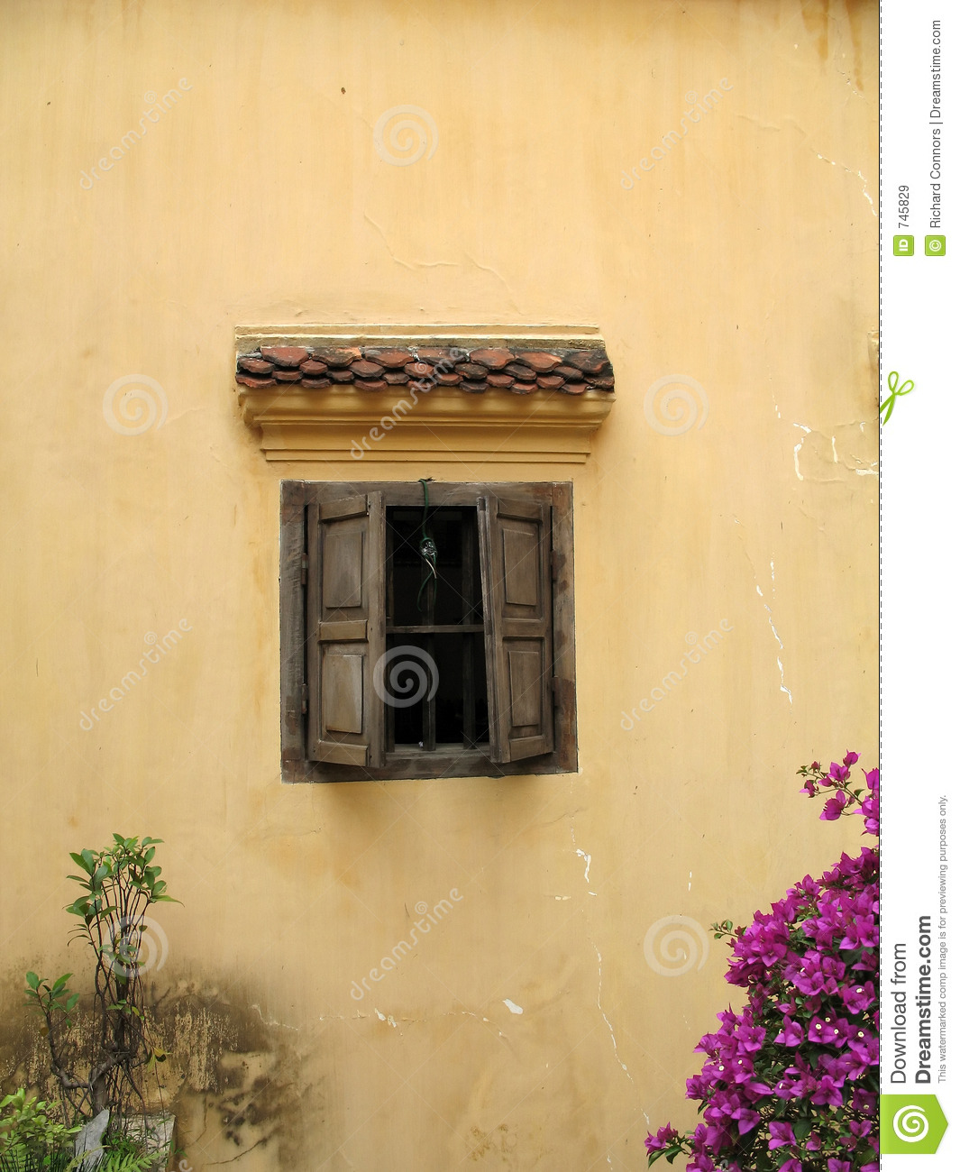 Real Plaster Walls : Real yellow plaster texture royalty free stock photo